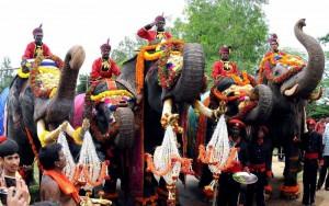The first batch of five elephants Balarama, Abhimanya, Arjuna, Mary, Varalakshmi lead the traditional 'Gaja Payana' or the march of elephants from Veeranahosahalli to Mysore Palace, in Mysore on Aug 14, 2014. (Photo: IANS)