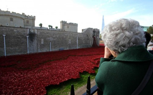 "A senior citizen visits the ceramic poppies, an art installation ""Blood Swept Lands and Seas of Red"" in the moat of the Tower of London, in London"