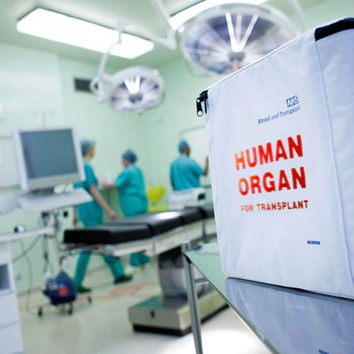 Human organ delivered to theatre in transport bag