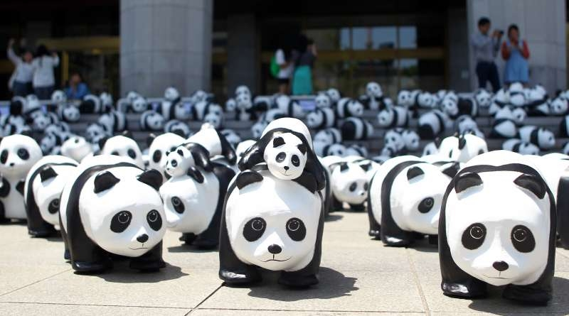 Panda sculptures are seen in Seoul, capital of South Korea, May 23, 2015. A total of 1,600 paper-made panda sculptures