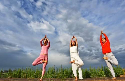 People practice yoga at Zhangye wetland reserve in Zhangye, northwest China's Gansu Province, June 7, 2015.