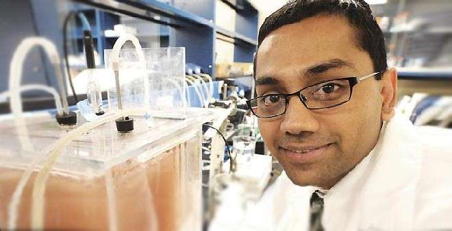 """Kartik Chandran, an Indian-American professor, who has won a $625,000 MacArthur """"Genius"""" grant for his work on wastewater treatment"""