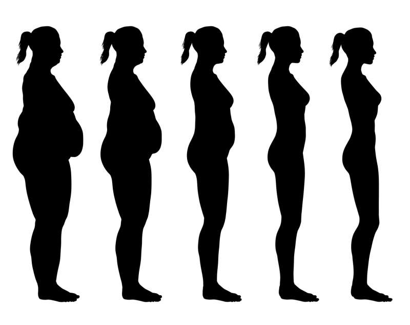 Obese to skinny female silhouette obesity