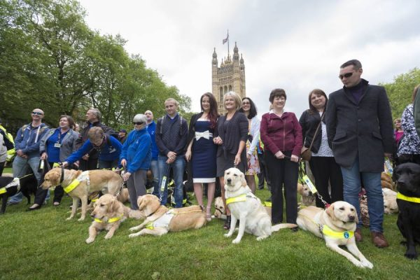 """Guide Dogs aren't optional, and every business that refuses service or admittance should be pursued in law to ensure they don't further discriminate"""