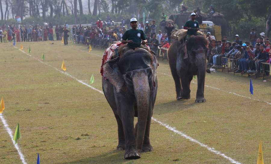 NEPAL-CHITWAN-ELEPHANT FESTIVAL