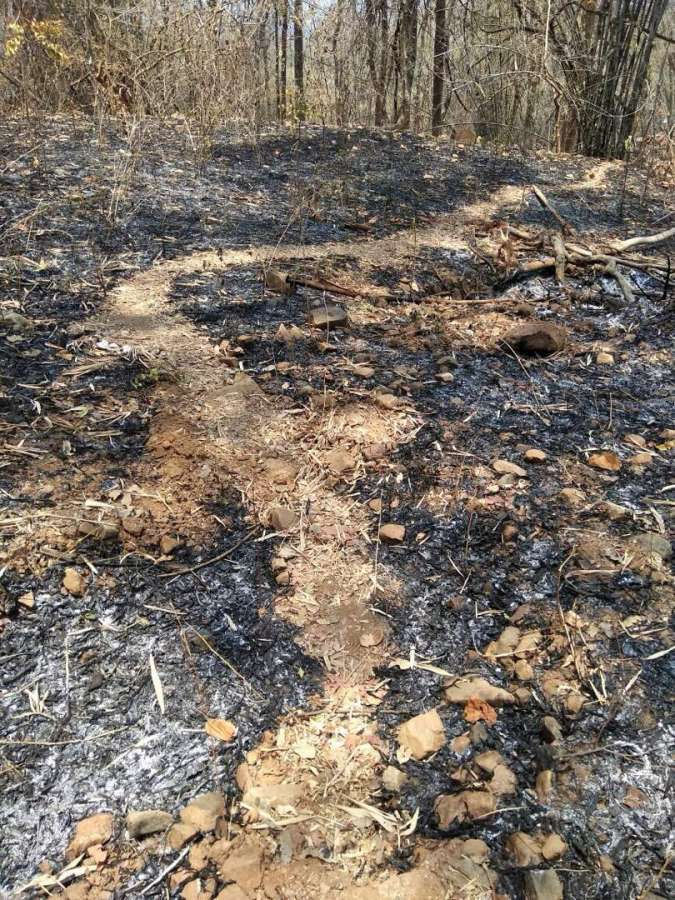 Sukma: The site where Maoists ambushed hundreds of Maoists ambushed and massacred at least 24 CRPF personnel in Chhattisgarh's Sukma district on April 24, 2017. The attack that took place at 12.30 p.m. when 74th Battalion of CRPF reached a forested area in Kala Pathar near Chintagufa.(Photo: IANS) by .