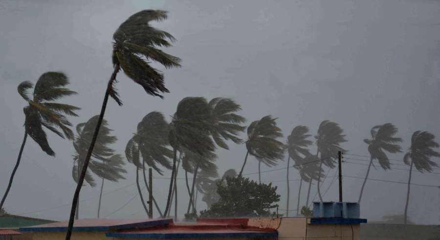 CAMAGUEY, Sept. 9, 2017 (Xinhua) -- Palm trees struggle against strong wind at the Santa Lucia Beach in Camaguey of Cuba Sept. 8, 2017. Hurricane Irma continued to batter Cuba's northeast coast on Friday with strong wind and waves. (Xinhua/Str/IANS) by .