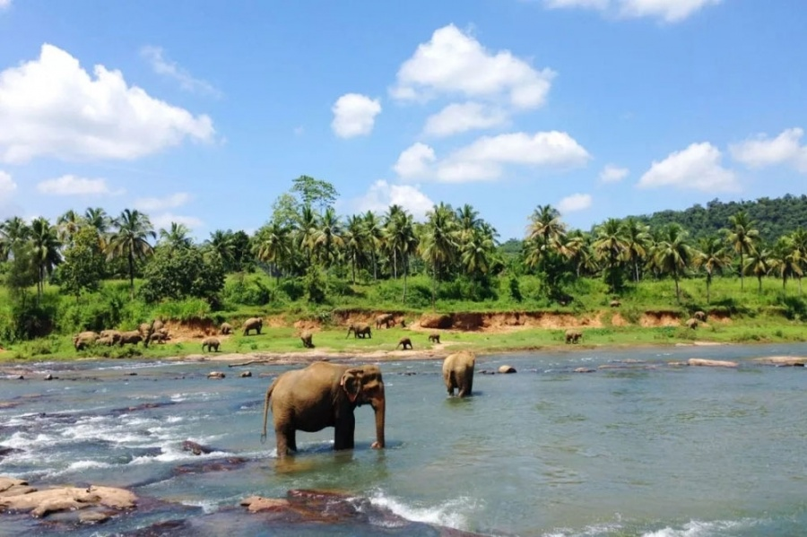 Sri Lanka: Tourism promotion campaign will be started in 12 countries including China. by .