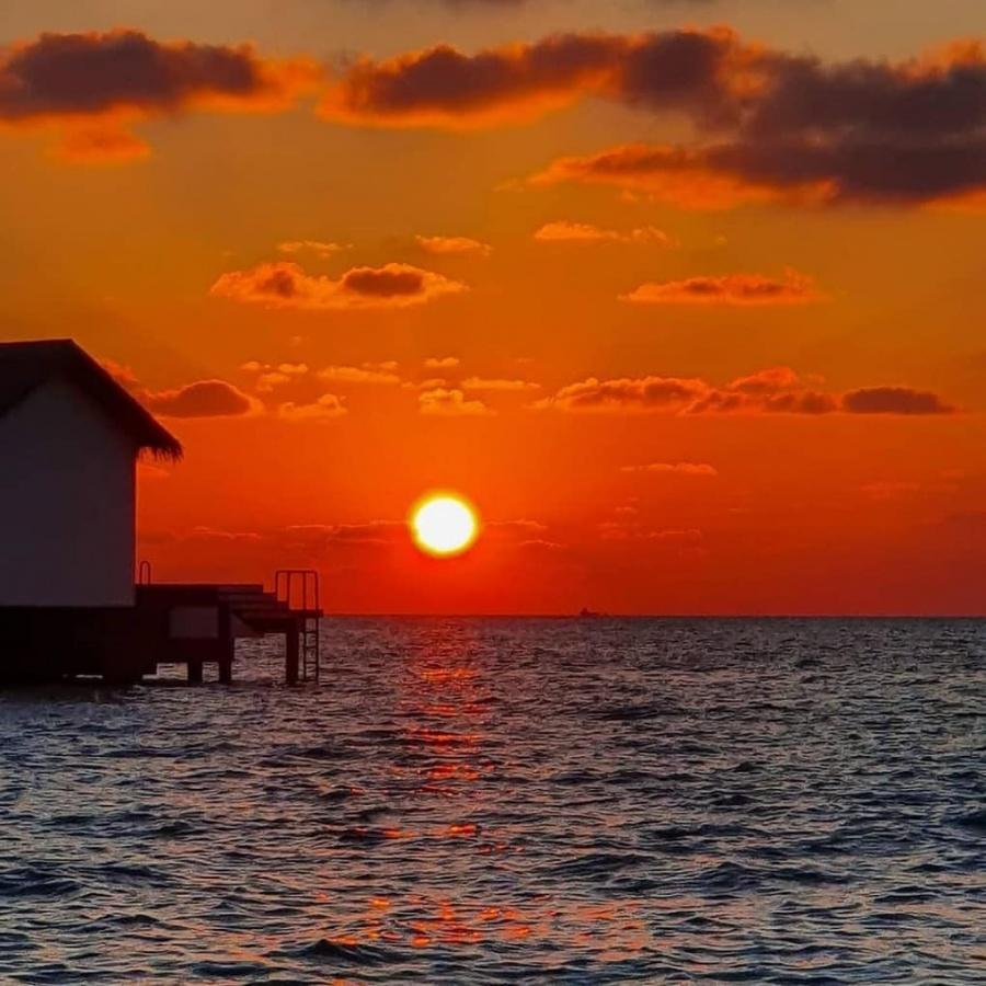 Virtual tourism: LA, Maldives livestream twilight calm. by .
